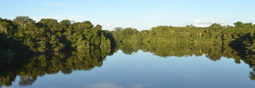 Volunteer Projects in the Amazon and Coast